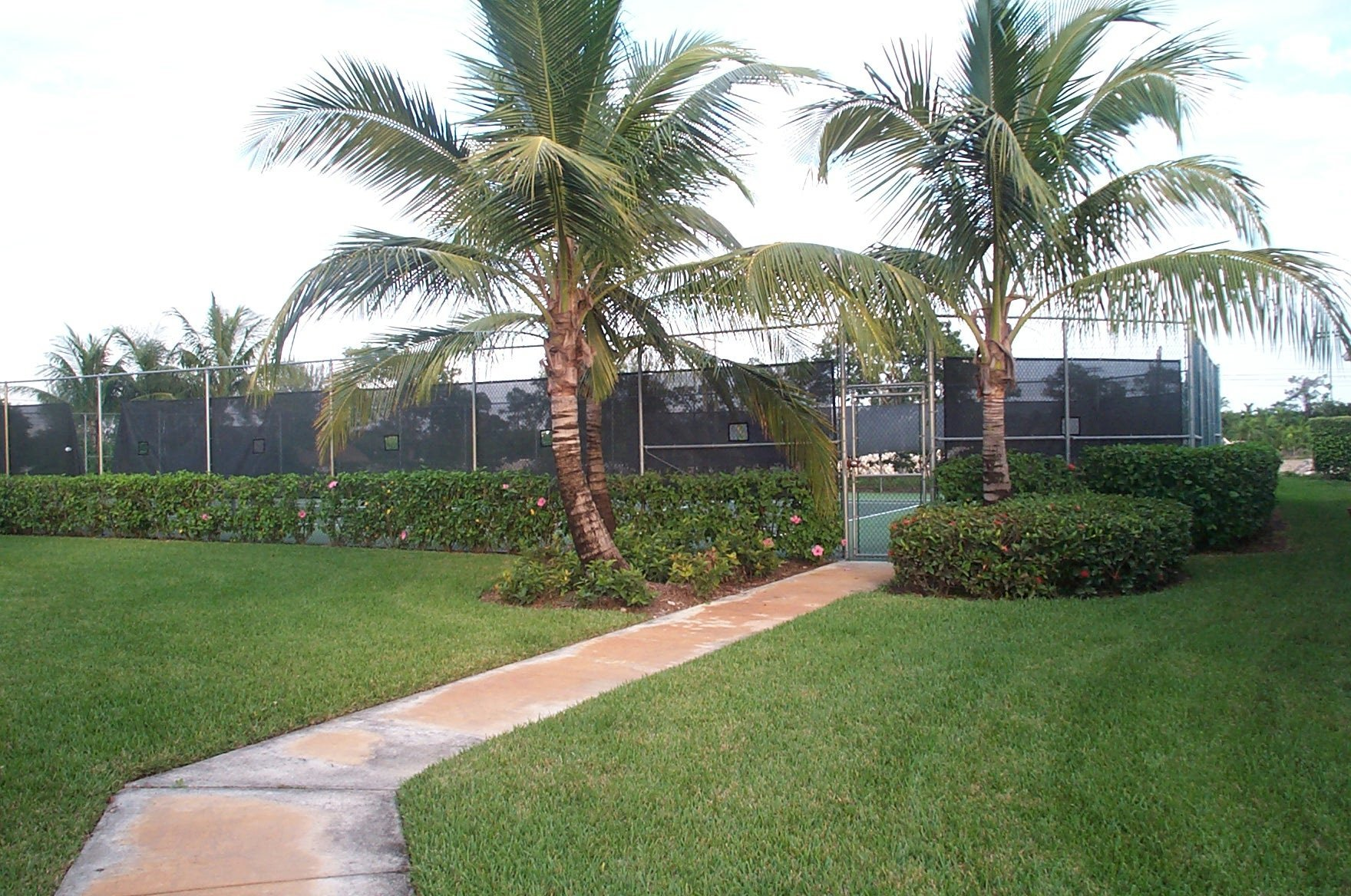 Cypress Cay Tennis courts