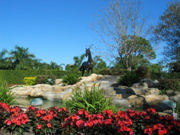 Parkland Horse and waterfall