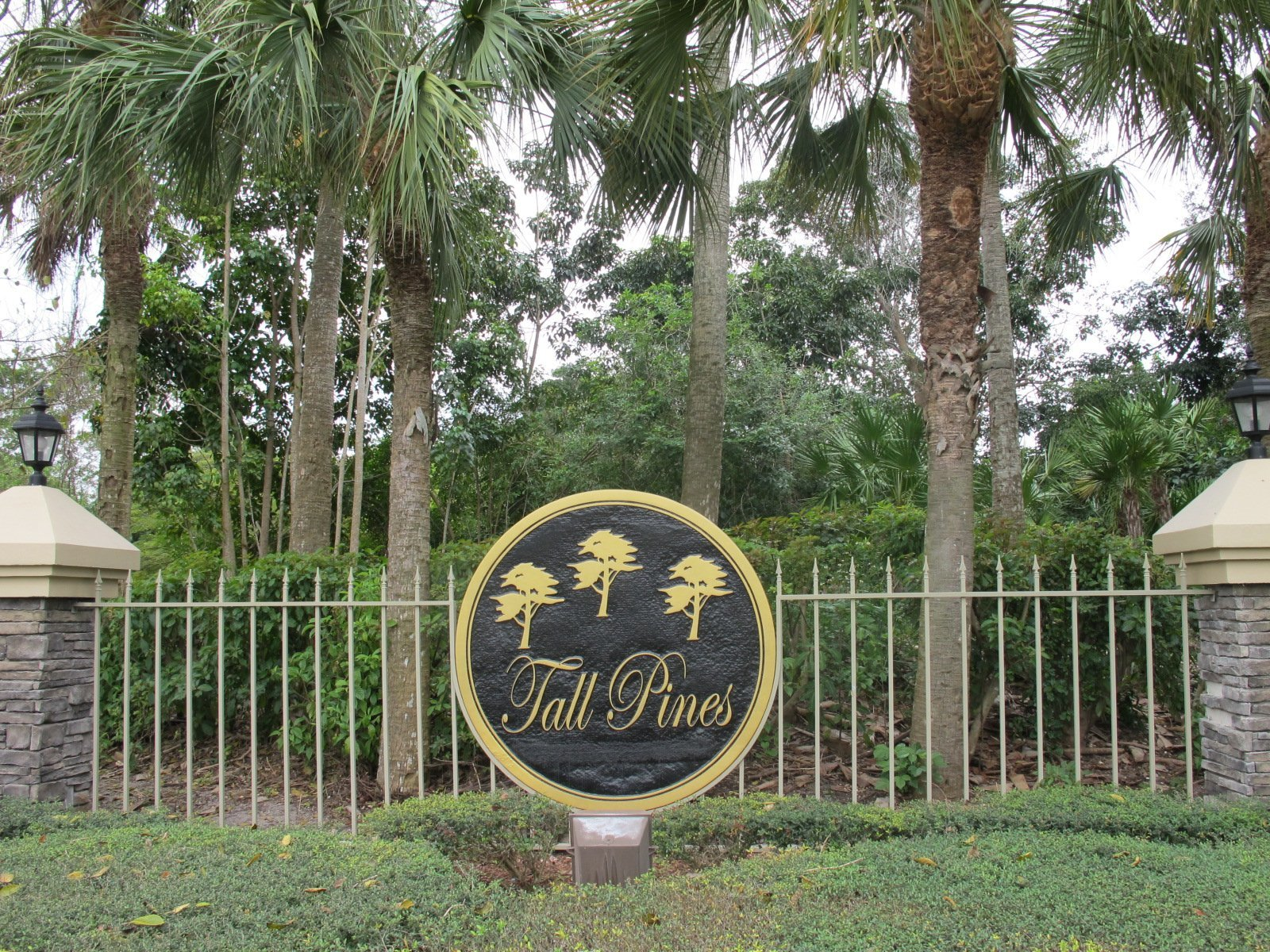 Tall Pines Homes for sale